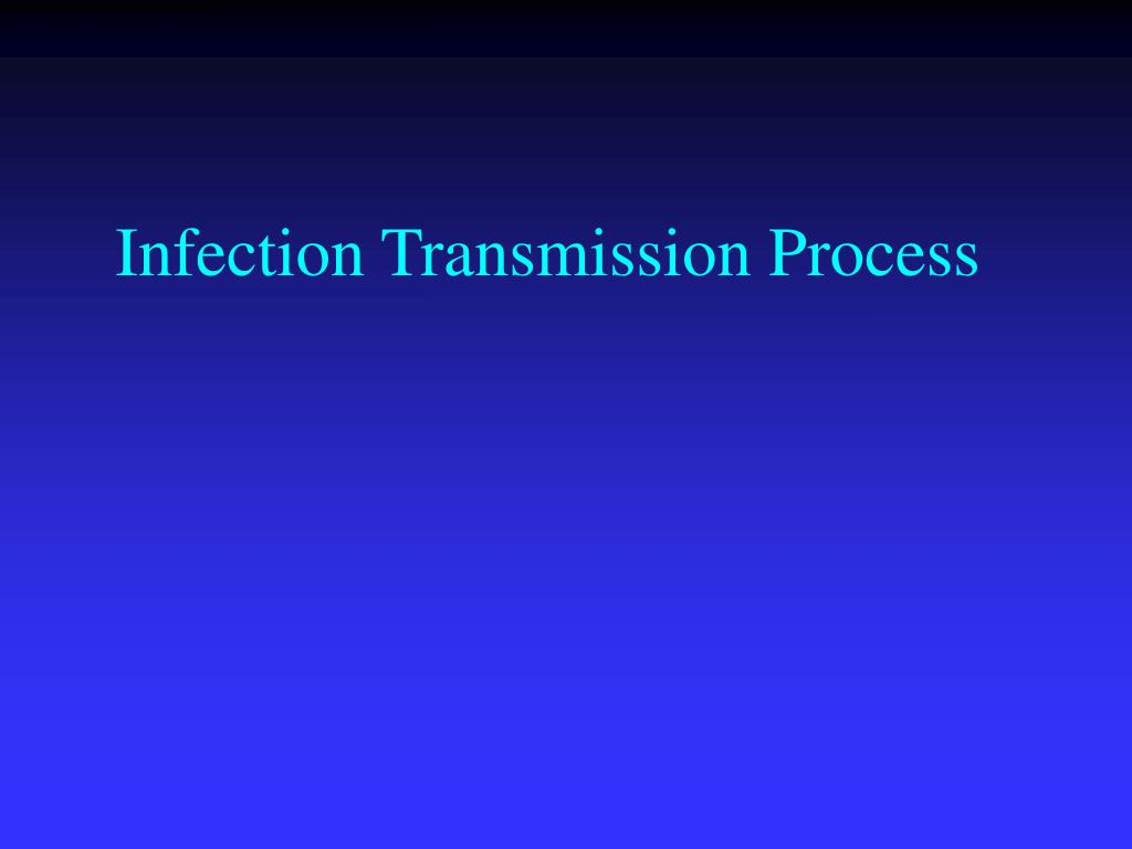 Infection Transmission Process