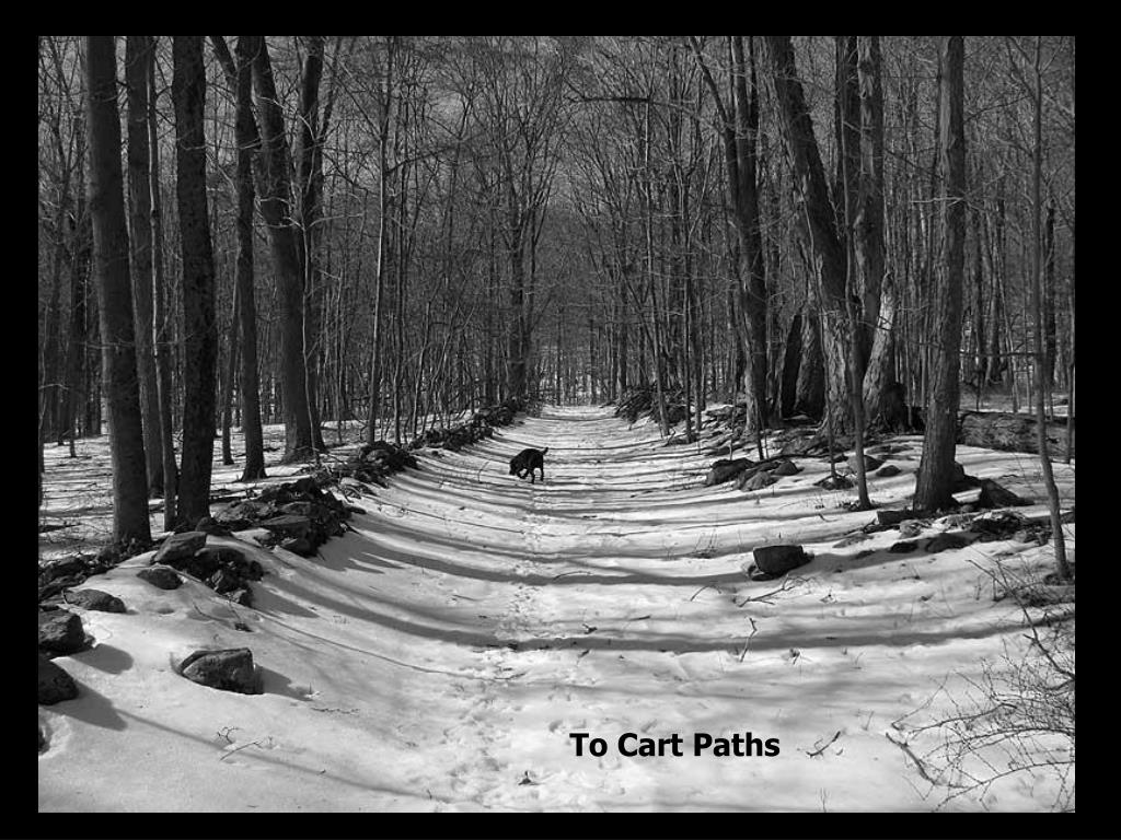 To Cart Paths