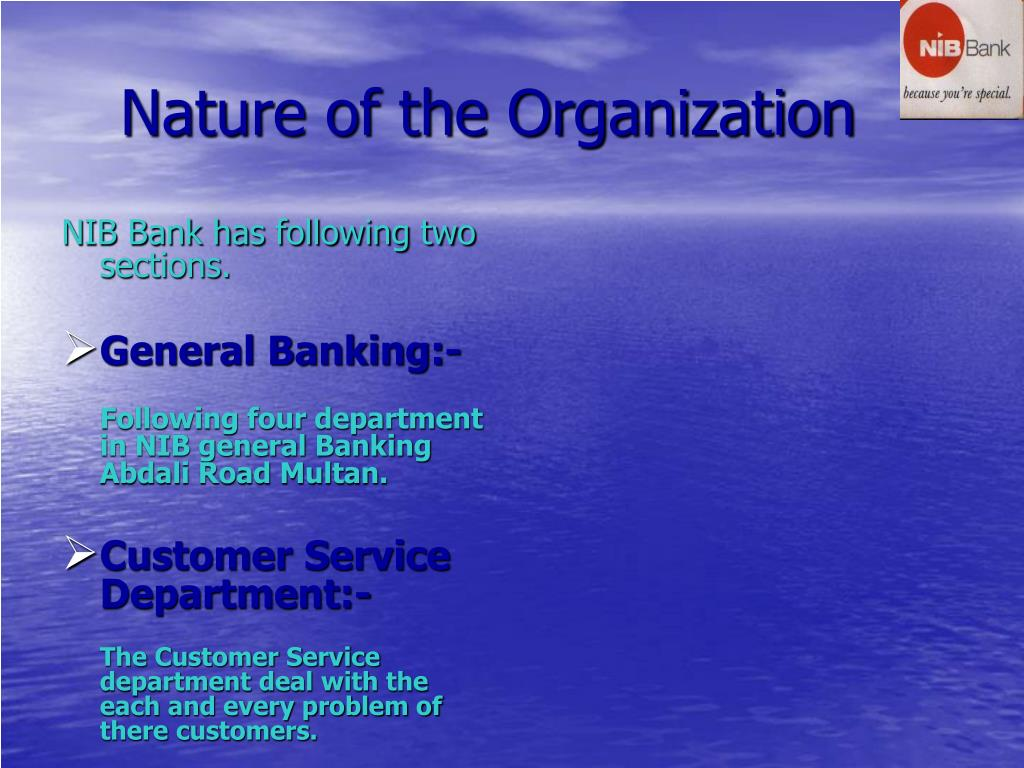 Nature of the Organization