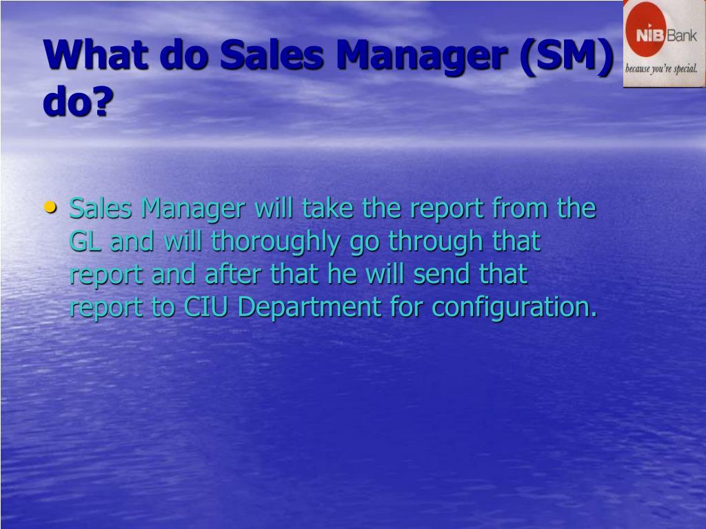 What do Sales Manager (SM) do?