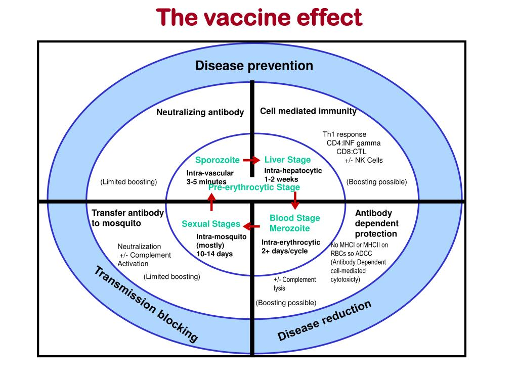 The vaccine effect