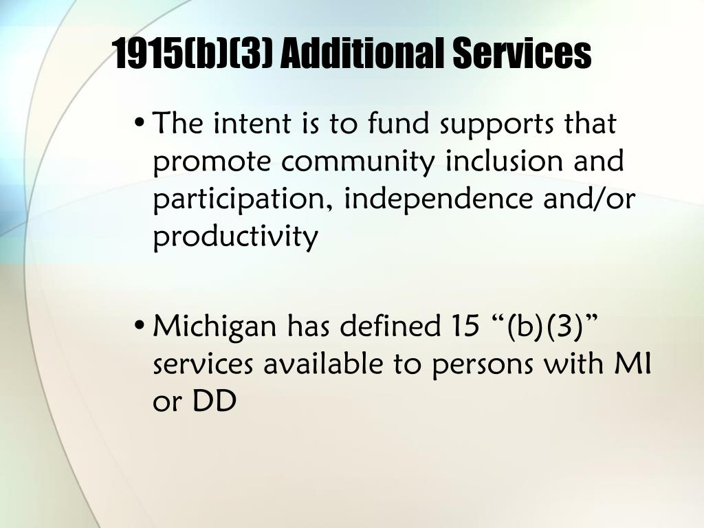 1915(b)(3) Additional Services