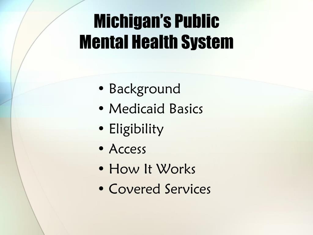Michigan's Public