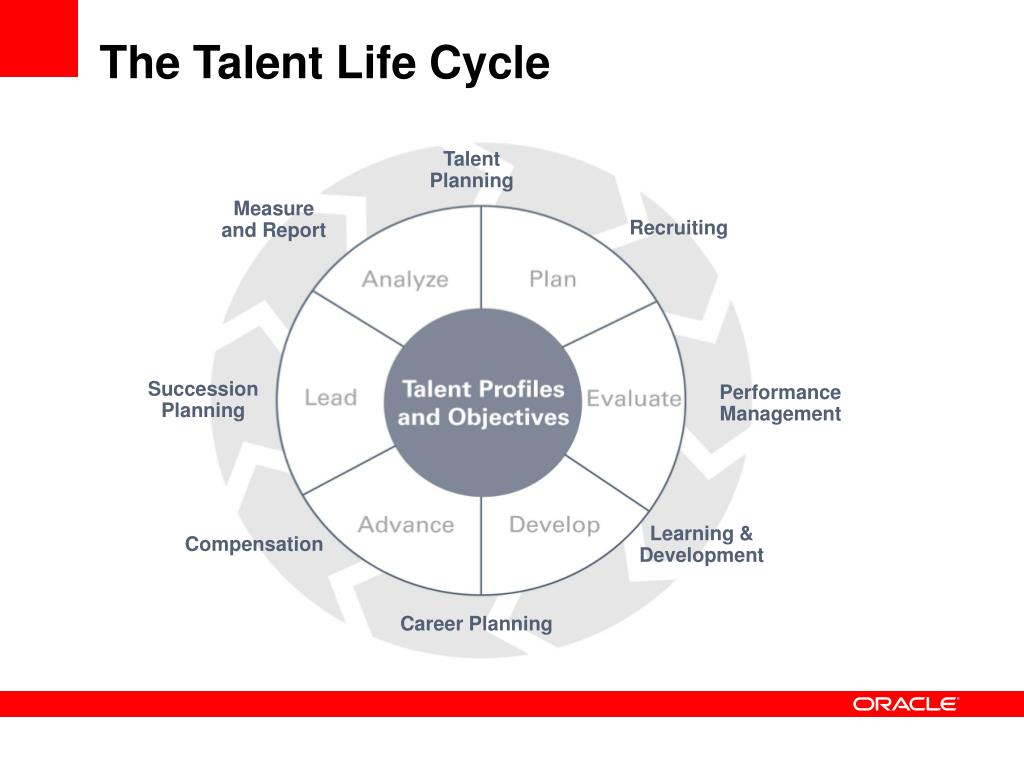 The Talent Life Cycle