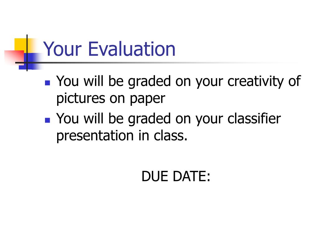 Your Evaluation