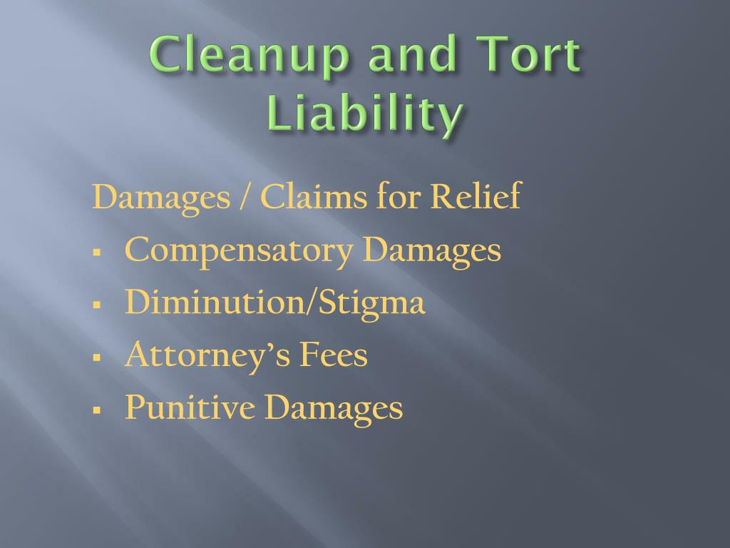 Cleanup and Tort Liability