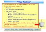 higgs roadmap