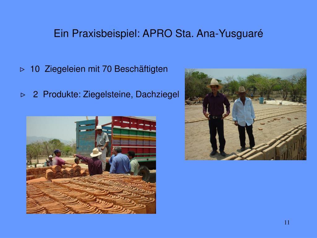 Ein Praxisbeispiel: APRO Sta. Ana-Yusguaré