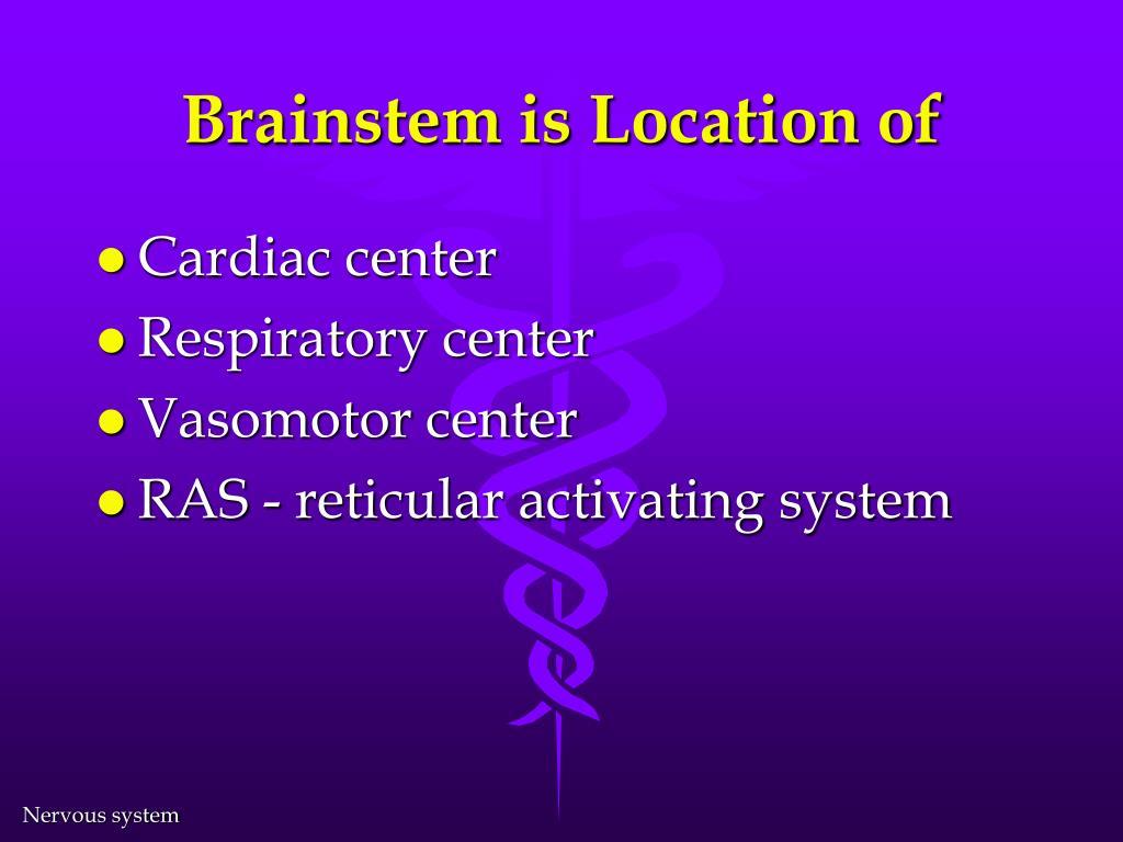 Brainstem is Location of
