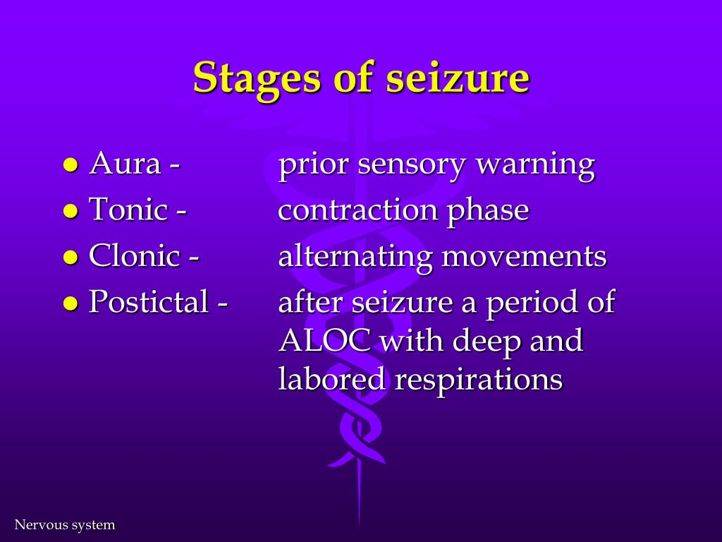 Stages of seizure