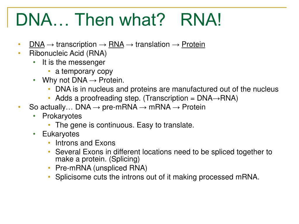 DNA… Then what?   RNA!