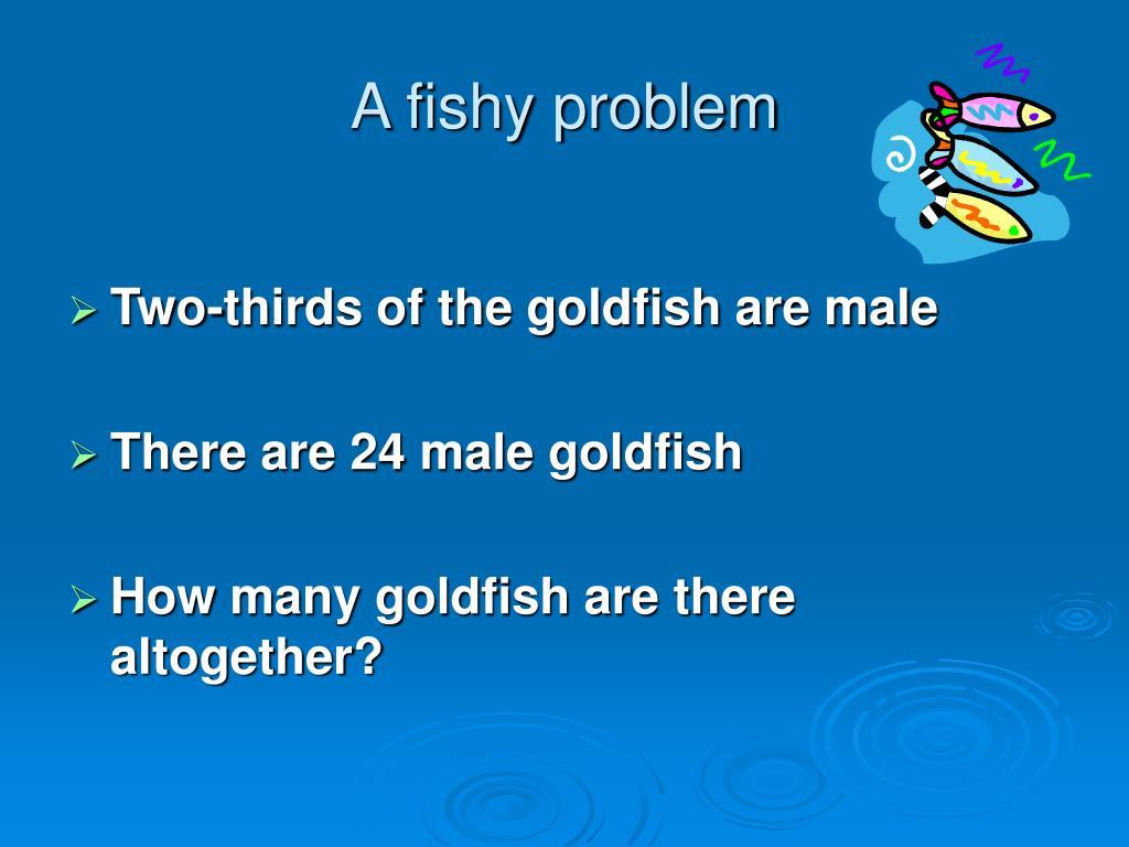 A fishy problem