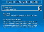 fraction number sense57