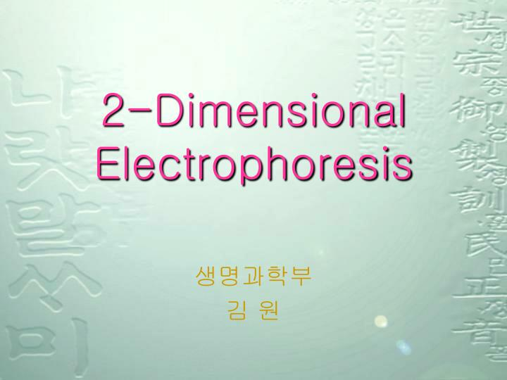 2 dimensional electrophoresis