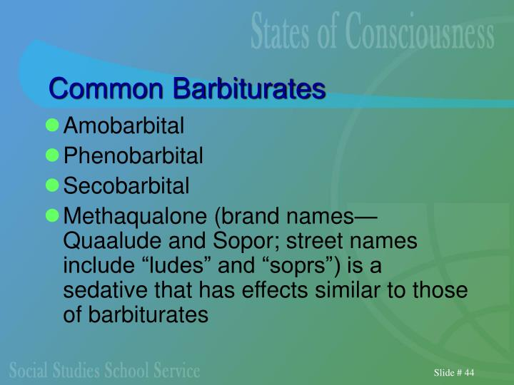 Common Barbiturates