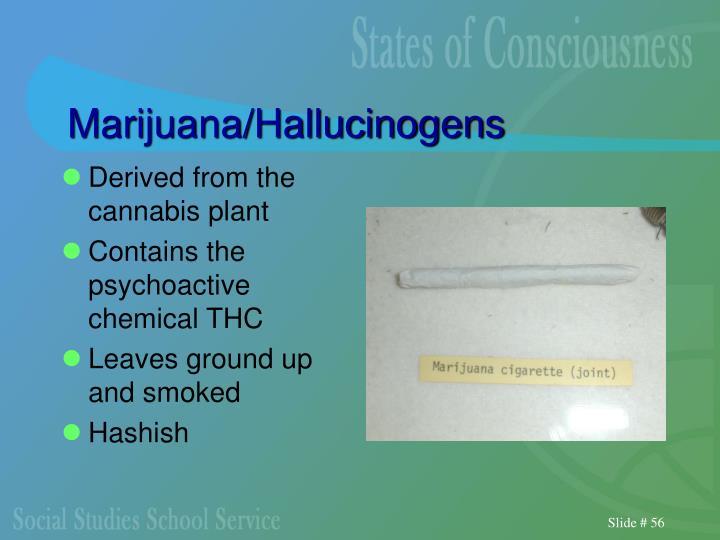 Marijuana/Hallucinogens