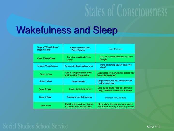 Wakefulness and Sleep
