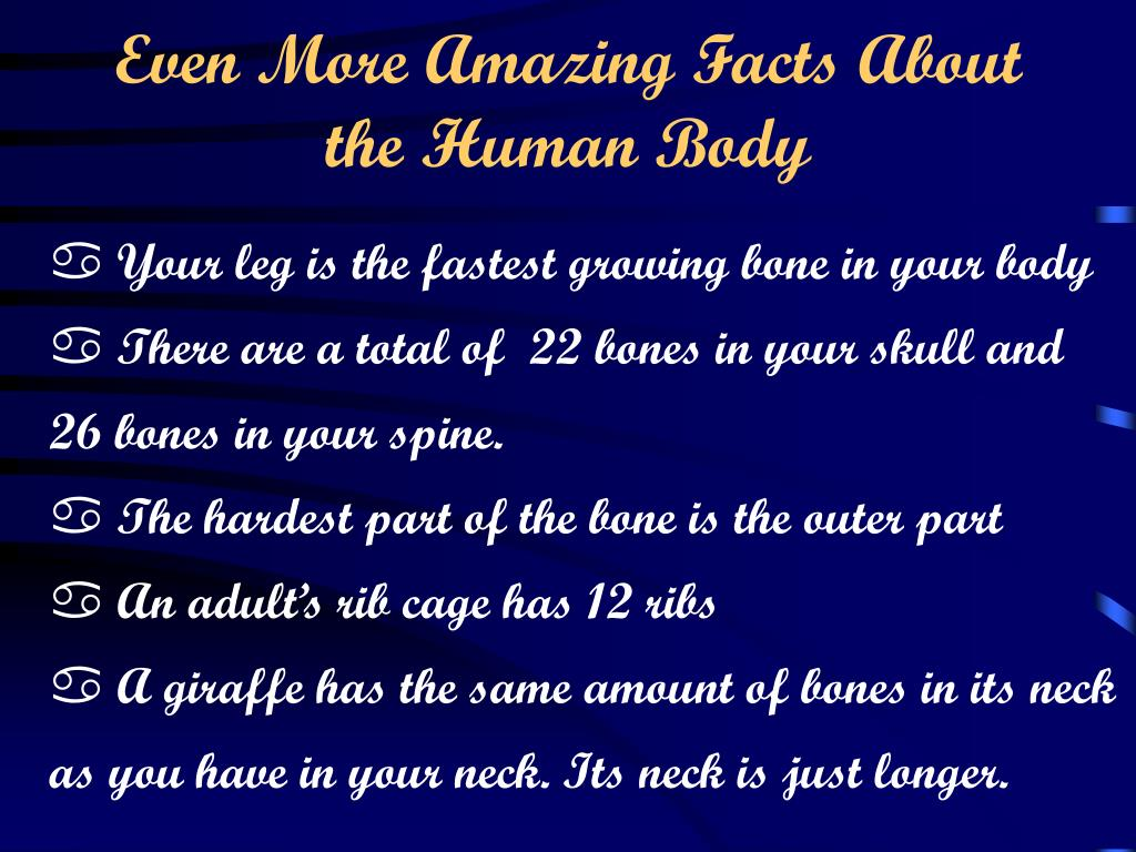 Even More Amazing Facts About the Human Body