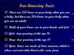fun amazing facts
