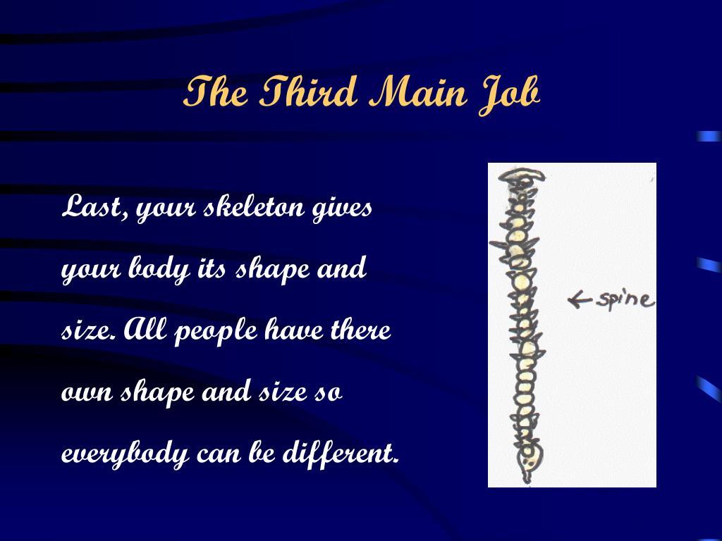 The Third Main Job