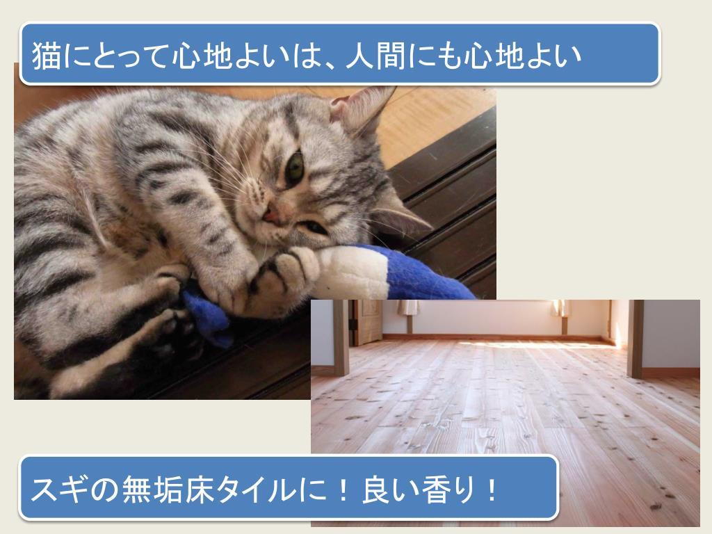 猫にとって心地よいは