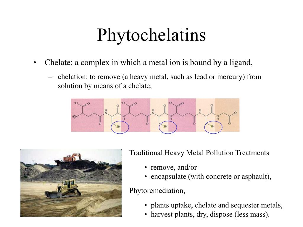 Traditional Heavy Metal Pollution Treatments