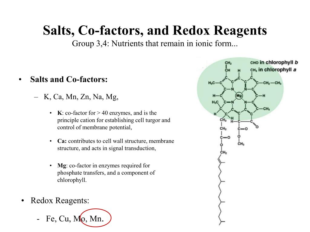 Salts, Co-factors, and Redox Reagents