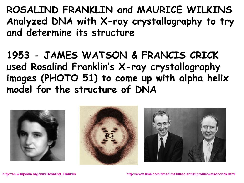 ROSALIND FRANKLIN and MAURICE WILKINS
