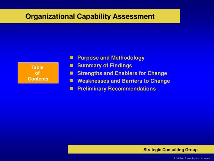 Organizational capability assessment