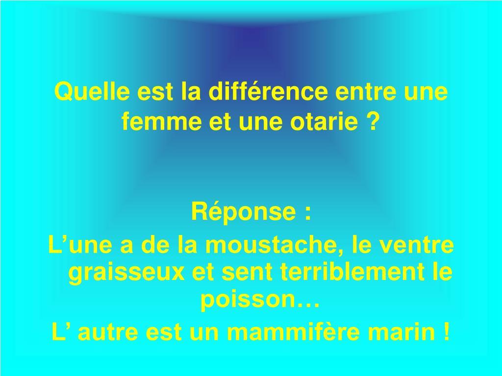 Quelle est la différence entre une femme et une otarie ?