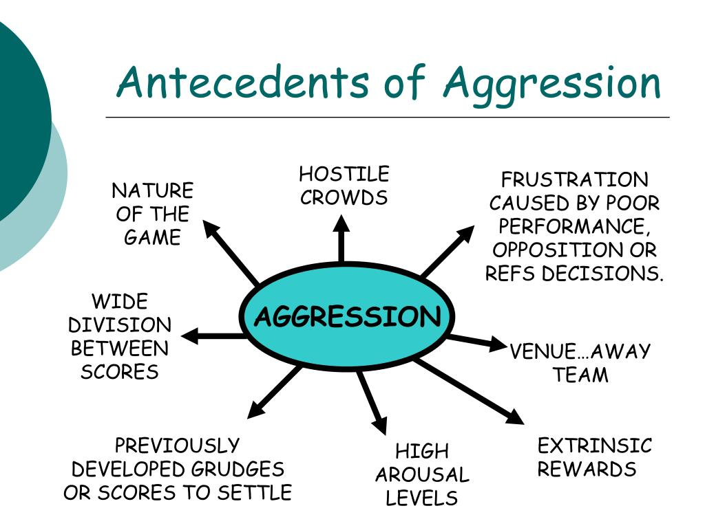 Antecedents of Aggression