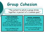group cohesion
