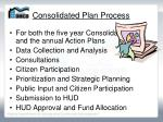consolidated plan process