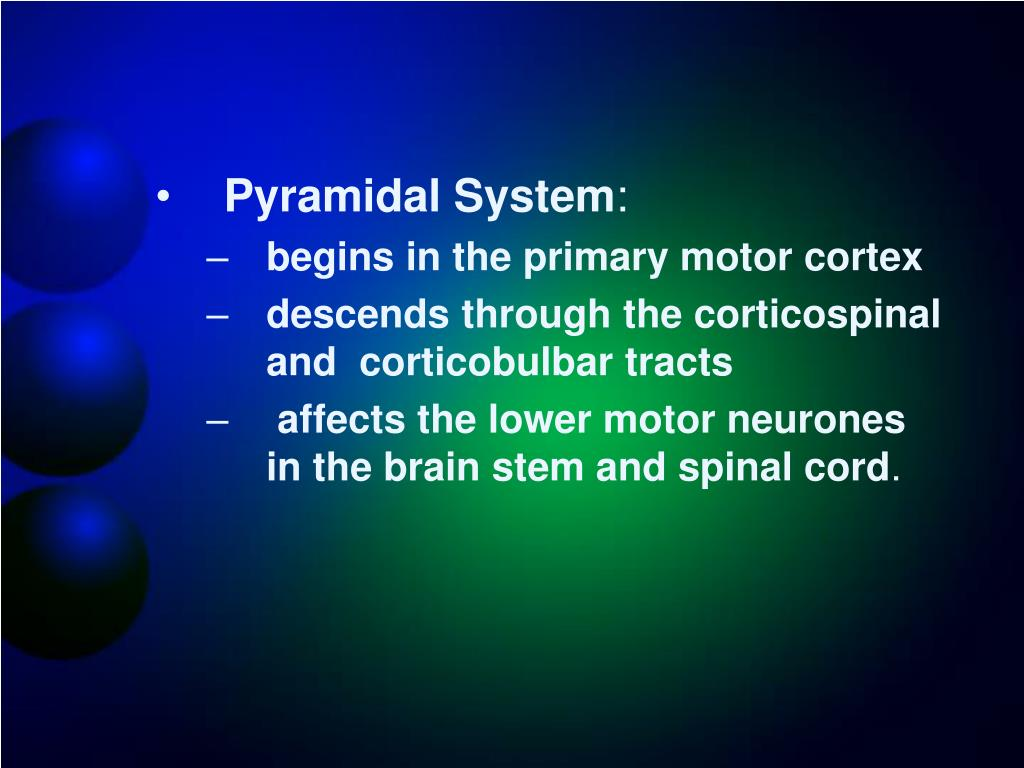 Pyramidal System