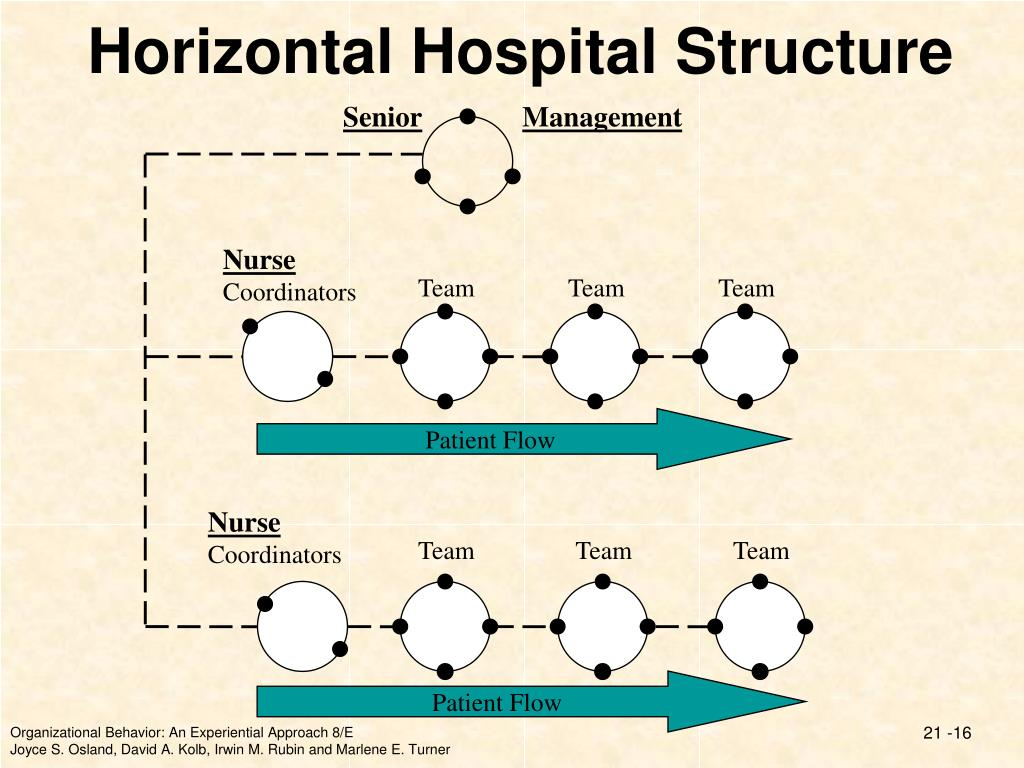 Horizontal Hospital Structure