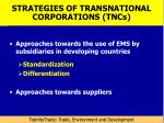 strategies of transnational corporations tncs