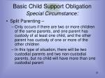 basic child support obligation special circumstance