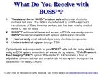 what do you receive with boss tm