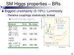 sm higgs properties brs