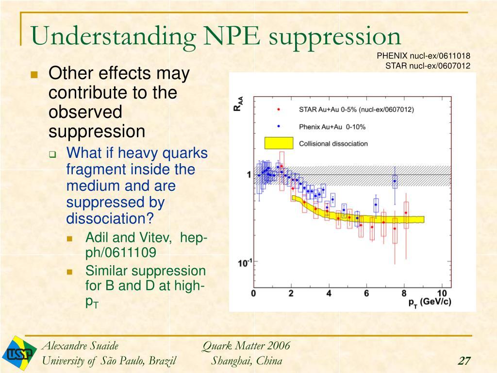 Understanding NPE suppression