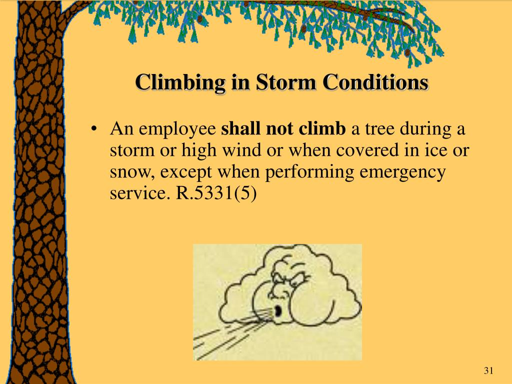 Climbing in Storm Conditions