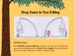 drop zones in tree felling