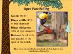 open face felling