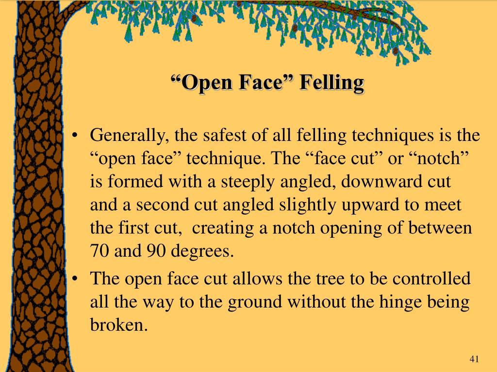 """""""Open Face"""" Felling"""