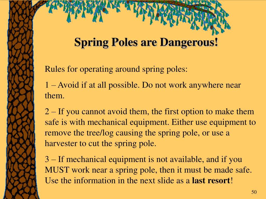 Spring Poles are Dangerous!