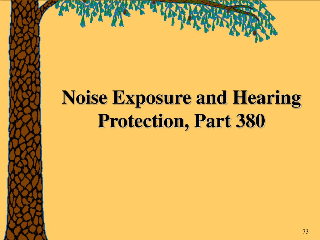 Noise Exposure and Hearing Protection, Part 380