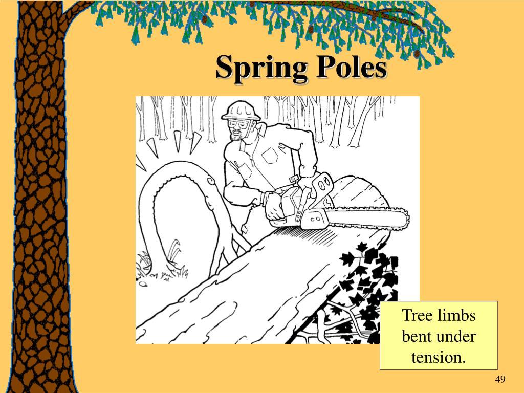 Spring Poles