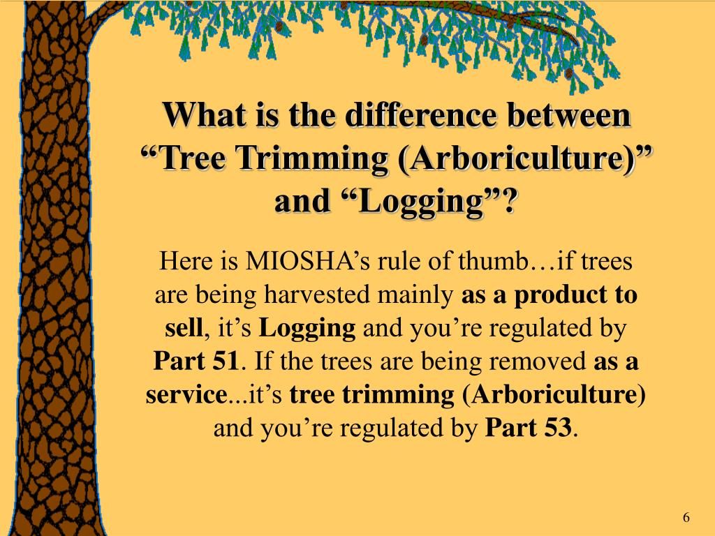 """What is the difference between """"Tree Trimming (Arboriculture)"""" and """"Logging""""?"""