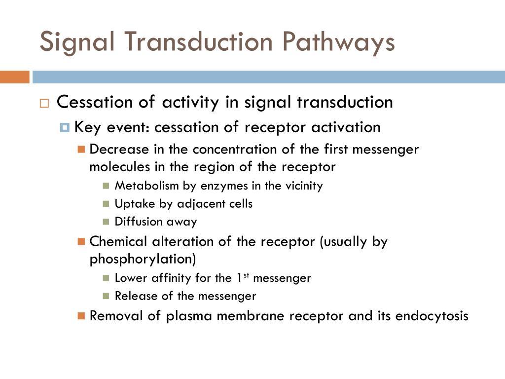Signal Transduction Pathways