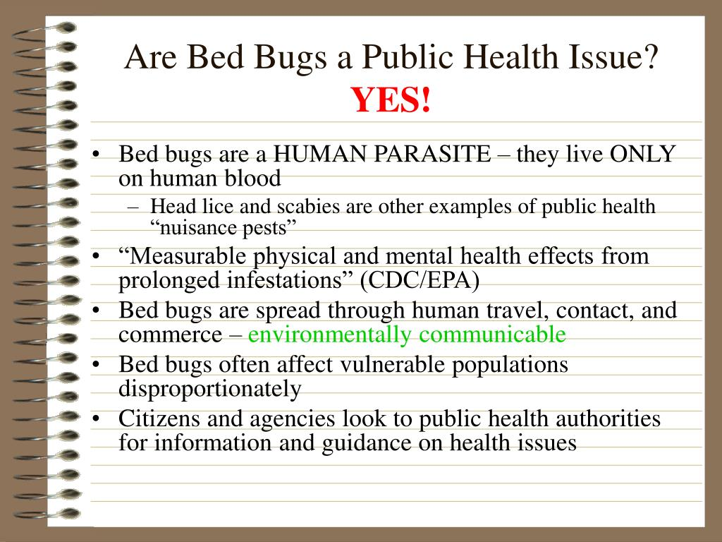 Are Bed Bugs a Public Health Issue?